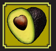 avocado-image-for-home-page