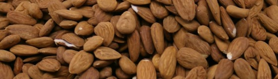 cropped-almonds.jpg